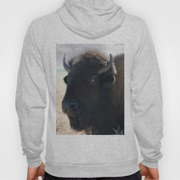 The Mighty Bison Hoody