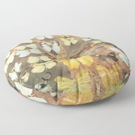 The Butterfly Collection I Floor Pillow