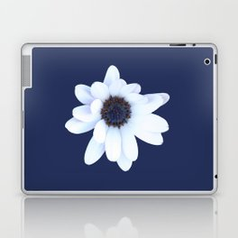 Sleepy African Daisy Flower Laptop & iPad Skin