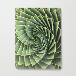 Aloe Golden Spiral Metal Print