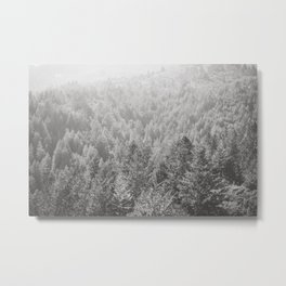 Mt Tamalpais in Shades of Gray Metal Print