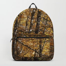 Forest in Autumn time Backpack