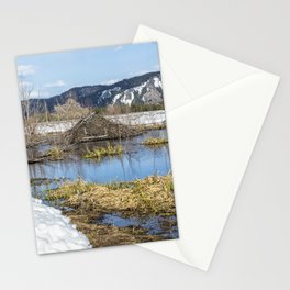 Nice Digs Stationery Cards
