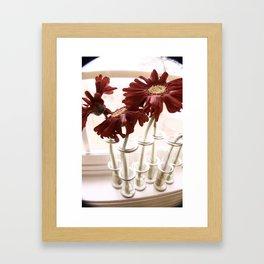 Love Me Not? Framed Art Print
