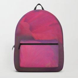 light leak Backpack