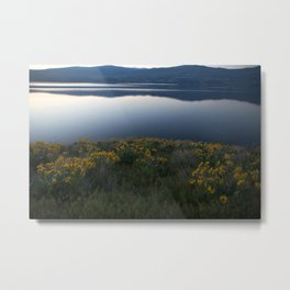 Okanagan Sunflower Metal Print