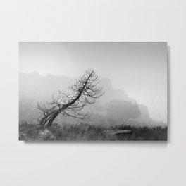 Windy tree. BW Metal Print