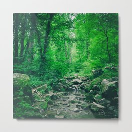Verdant Creek Metal Print