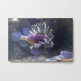 Lionfish Metal Print
