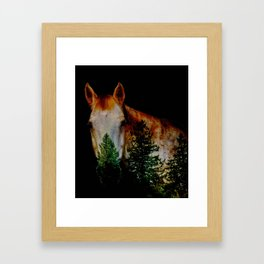 Horse with Trees He Sees Framed Art Print
