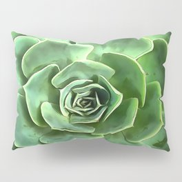 Succulent 1 Pillow Sham