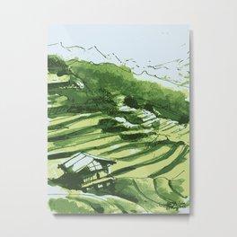 Terrace fields of Vietnam Metal Print