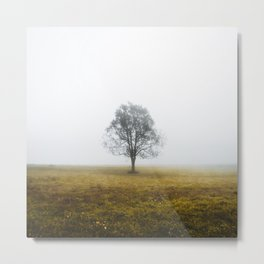 Lonely tree in a foggy autumn morning Metal Print