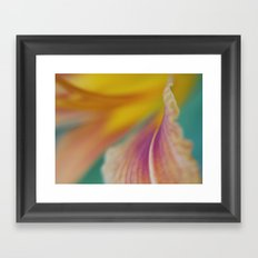 Day Lily Abstract Framed Art Print