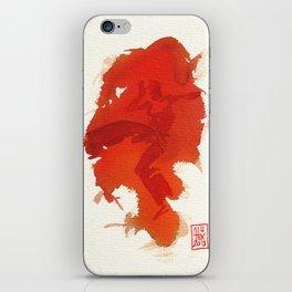 Capoeira 347 iPhone Skin