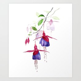 purple blue red fuchsia flower Art Print