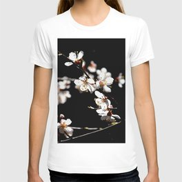 Marvelous Japanese Apricot Flowers. Play Of Light And Shadows. Black Background T-shirt
