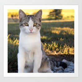 Kountry Kitty II Art Print