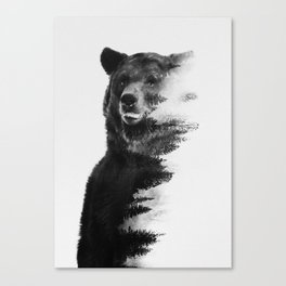 Observing Bear Canvas Print