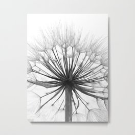 Black and White Dandelion Metal Print