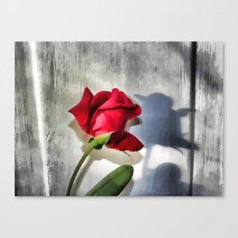 Red Rose Bud Shadow Canvas Print