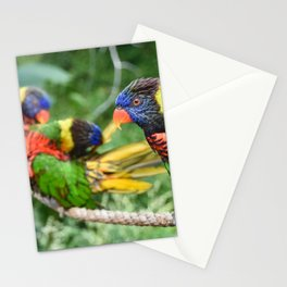 Parrots Stationery Cards