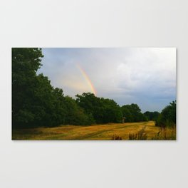 rainbow walking Canvas Print