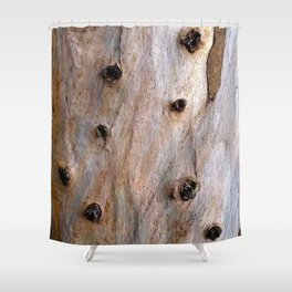 Eucalyptus Tree Bark and Wood Texture 14 Shower Curtain