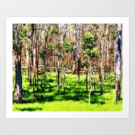 Australian Bush Scene Art Print