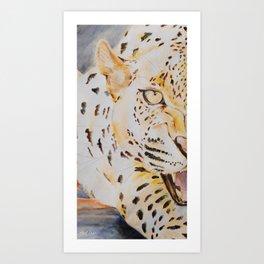 'WILD CAT' Art Print