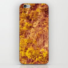 Back to Pepperland. iPhone & iPod Skin