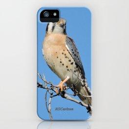 A Kestrel Says Hello iPhone Case