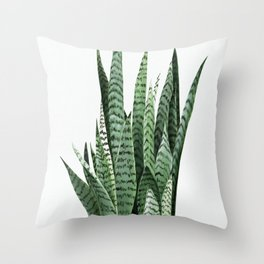 Snake Plant (Sansevieria laurentii) Art Print. Botanical Wall Art. Original acrylic painting by Anne Throw Pillow