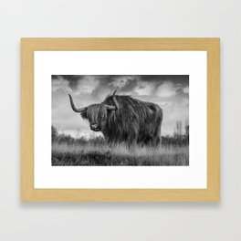 Highland Scottish Cow Framed Art Print