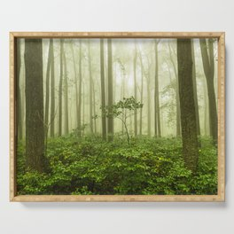 Dreaming of Appalachia - Nature Photography Digital Landscape Serving Tray