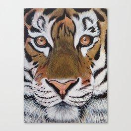 The Stare Canvas Print