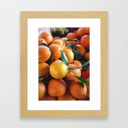 Beautiful Fruit - Oranges Framed Art Print