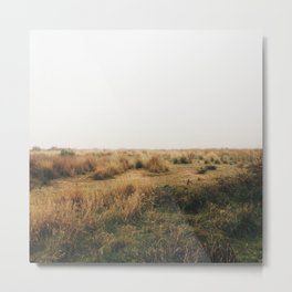 Fields Of Metal Print