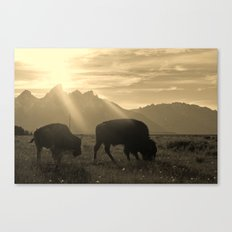 History on Hooves Canvas Print