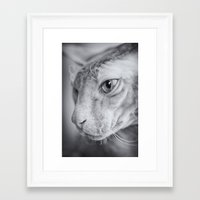 hercules Framed Art Prints featuring Hercules by Ruta Dok