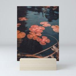 Dusty Pond || Lily Pad Mini Art Print
