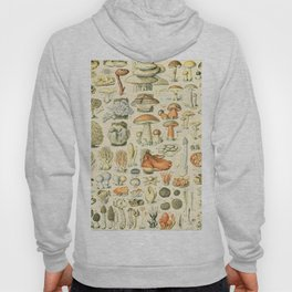 Mushroom Diagram // Champignons II XL by Adolphe Millot 19th Century Science Textbook Artwork Hoody