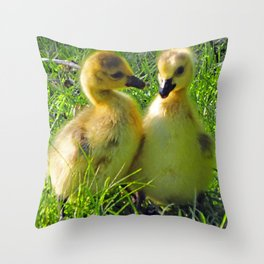 Cute Baby Canada Geese Stylized Photo Illustration Throw Pillow