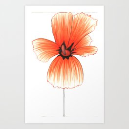 Poppy!! Art Print