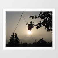 Hollywood Riviera Sunrise with Flower Art Print