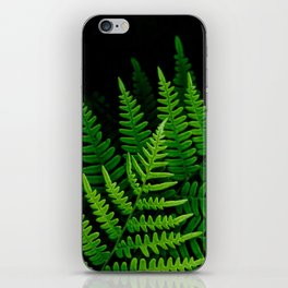 Fern Fronds on Black iPhone Skin