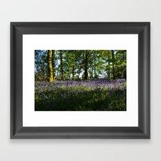 Blue Carpet Framed Art Print