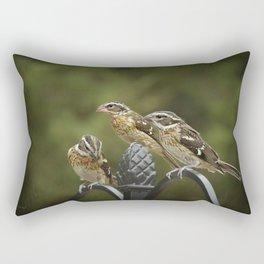 Grosbeaks Three Rectangular Pillow