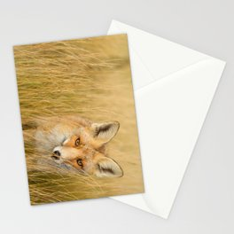 The Catcher in the Grass Stationery Cards