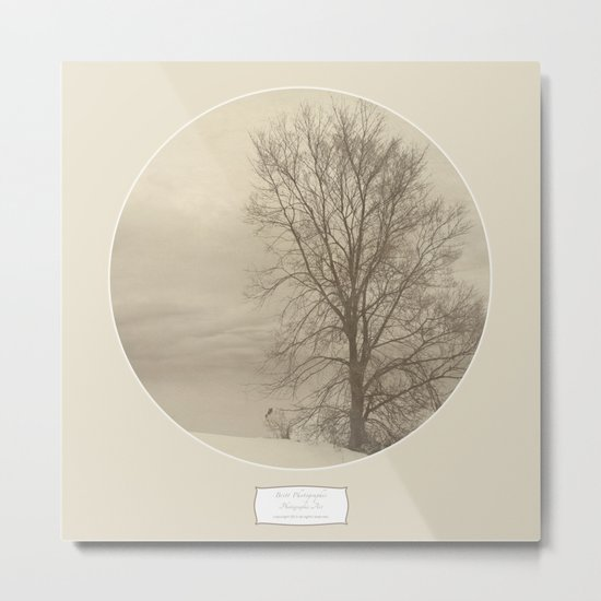 Winter Americana III Metal Print